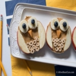 Owl Rice Cake Snack